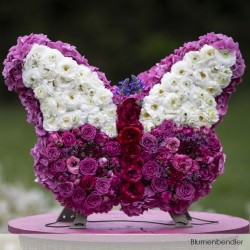 Sphères OASIS® RAINBOW® Foam